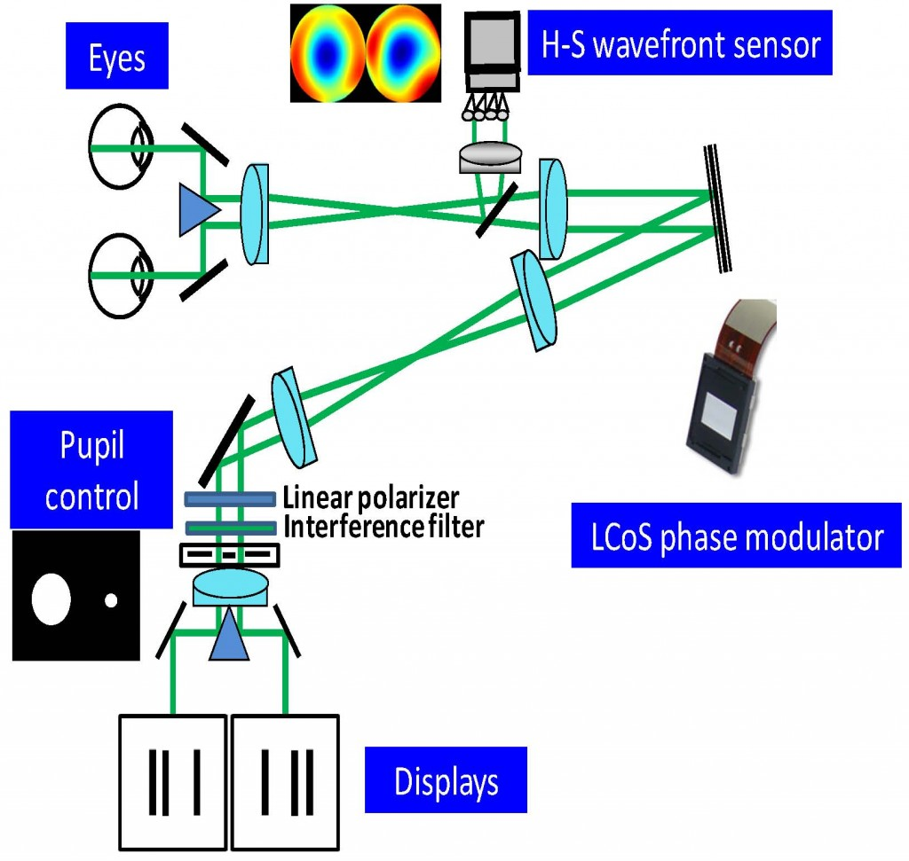 Impact on stereo acuity of two presbyopia correction approaches impact on stereo acuity of two presbyopia correction approaches monovision and small aperture inlay pooptronica Images
